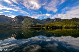 Reflections---Great Bear Rainforest